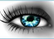 Крем для глаз – необходимый элемент ухода. Часть I